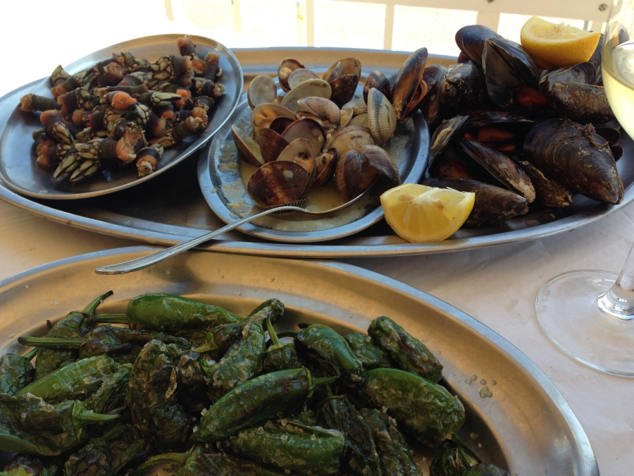 Clockwise, from upper right: Goose barnacles, clams, mussels, Padrón peppers.